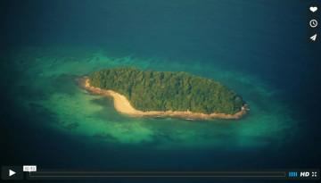 Island Life Malaysia